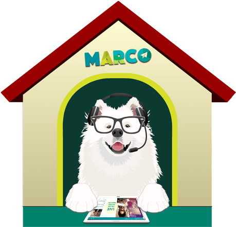 marco-doghouse
