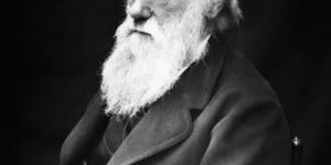 Black and white photo of Charles Darwin. Darwin is bald with a long white beard in the photo.